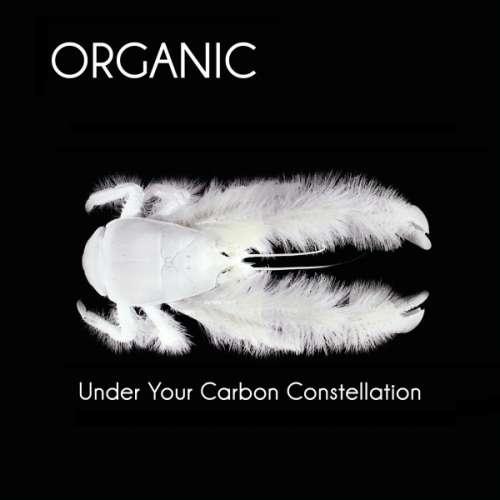 ORGANIC - Under Your.. -digi-