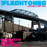 Brooklyn Sound Solution - FLESHTONES