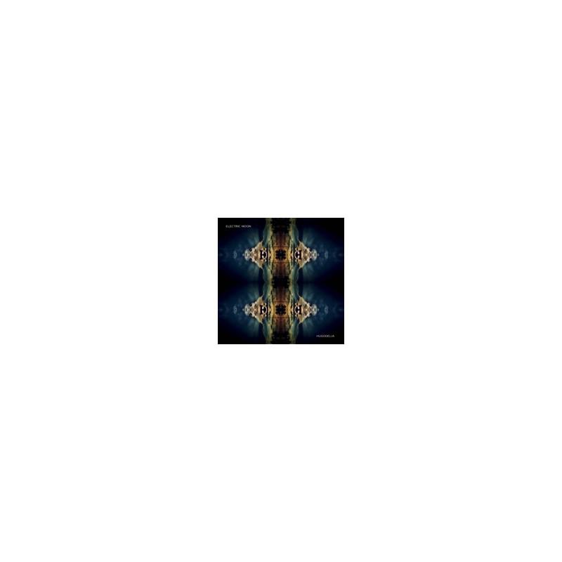"""MAGNETIC FIELDS - 69 LOVE SONGS (6X10"""") 10"""""""