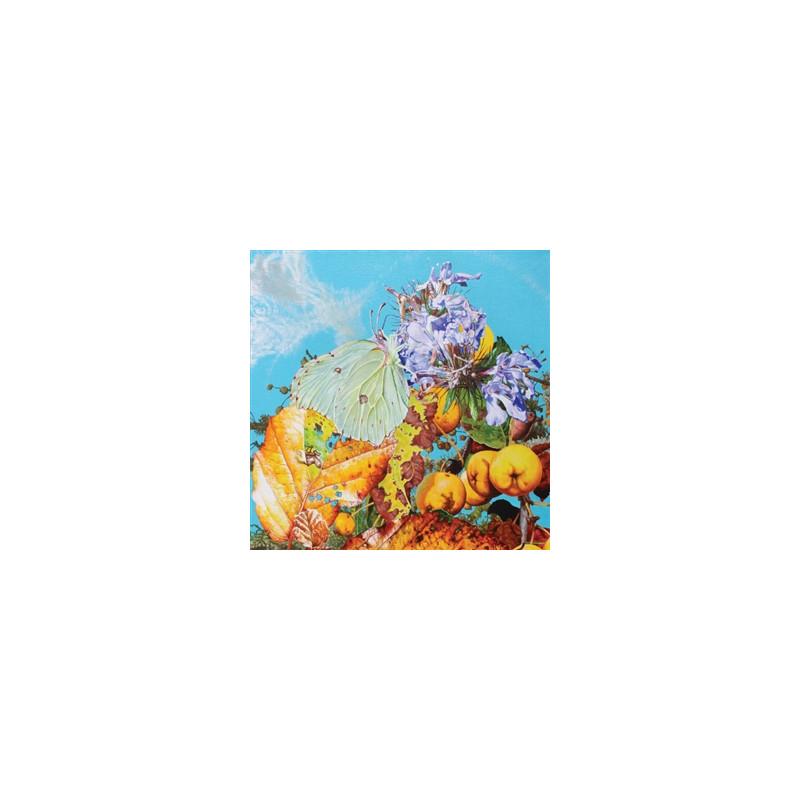 James, Elmore - Hits & Rarities Lp