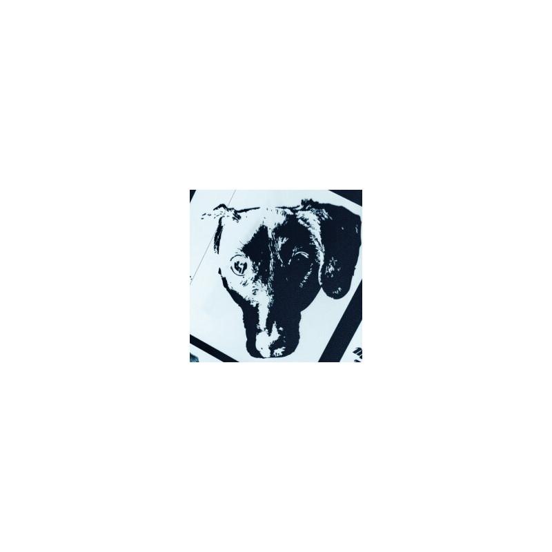 Monophona - Girls On Bikes Boys Who Sing Lp