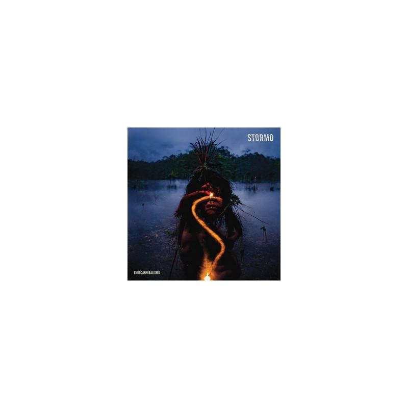 Erdmöbel - Hinweise Zum Gebrauch (ltd. Weißes Vinyl) Lp