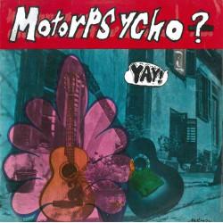 Philwit & Pegasus - Philwit & Pegasus Lp