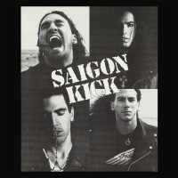 Noseholes - Ant And End Lp