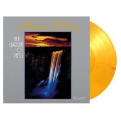 Various - Exotic Blues & Rhythm-vol. 04 (clear Vinyl) Lp